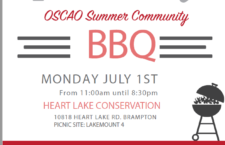 OSCAO Summer Community Picnic